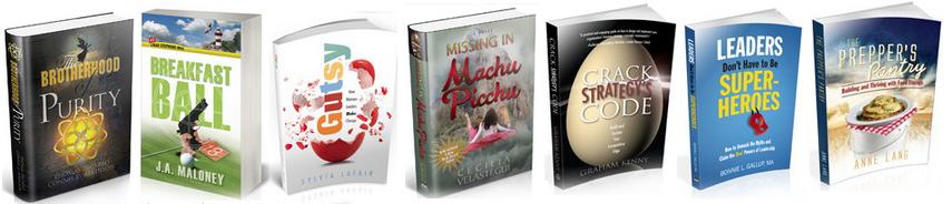 seven-book-cover-design-samples