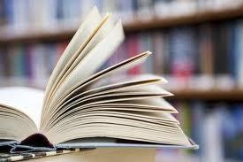 Shelfbooks 6